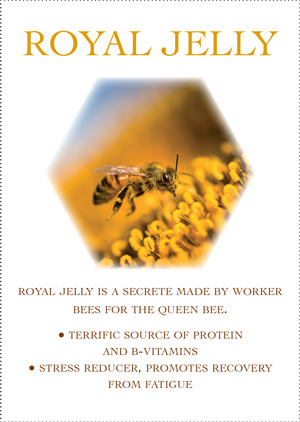 Arctic_Royal-Jelly
